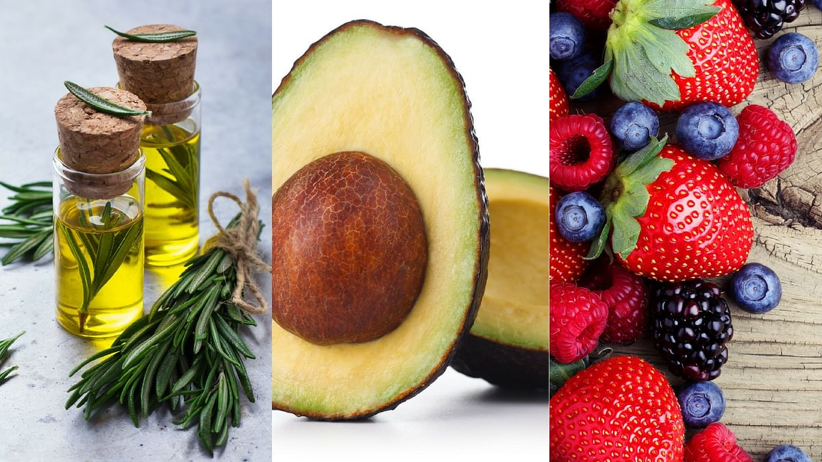 Rosemary (left), avocado (centre) and berries (right) are all memory boosting foods.