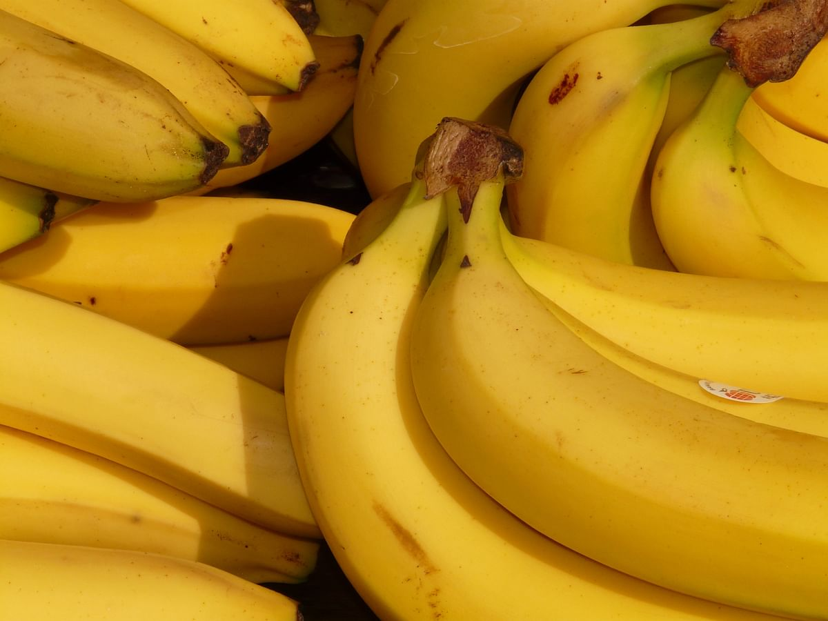 Bananas, which were loaded with antioxidants, fibre, potassium and vitamin B6, were a healthier alternative to the sugar and chemical laden sports drinks.