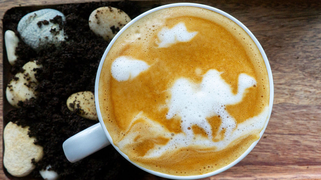 Is camel milk the new superfood?