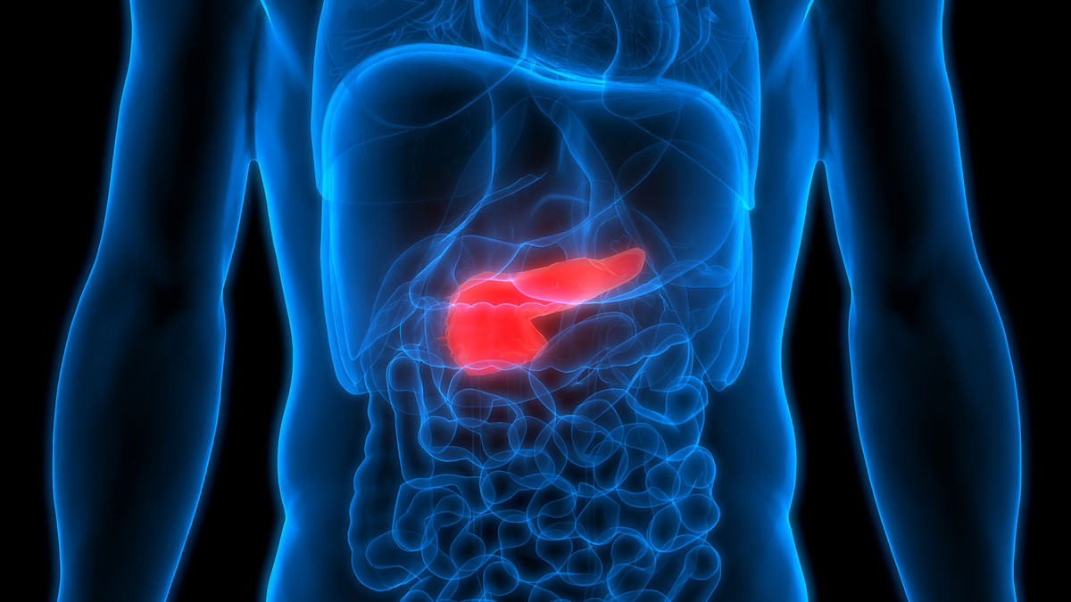 Oral Bacteria May up Risk of Pancreatic Cancer