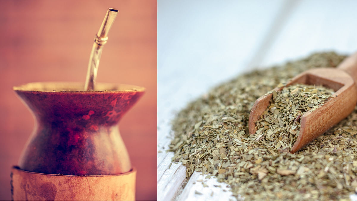 Ditch Coffee, Yerba Maté Tea Can Be your Healthier Caffeine Fix
