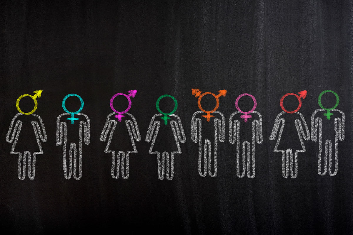 No One Gay Gene: Many Factors Play a Role in Defining Sexuality