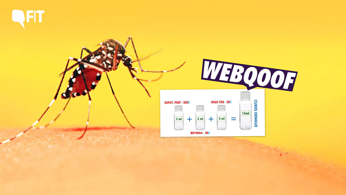 FIT WebQoof: There's No Medical Cure For Dengue, Say Experts
