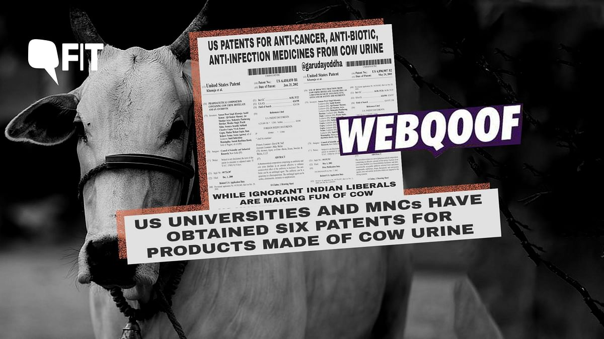 Have US Universities and MNC's really obtained six patents for medicines made of cow urine?