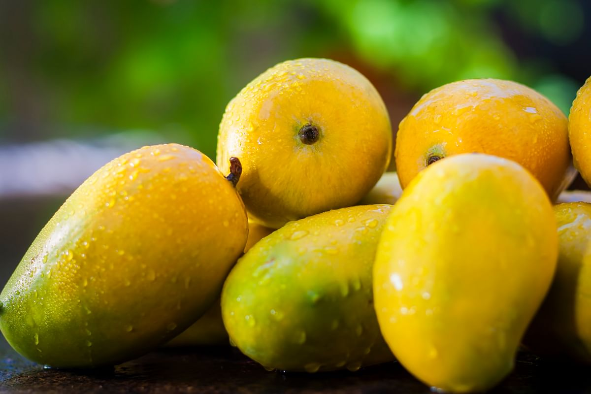 When we are the largest exporters of mangoes in the world, why are we shying away from them, asks Rujuta.