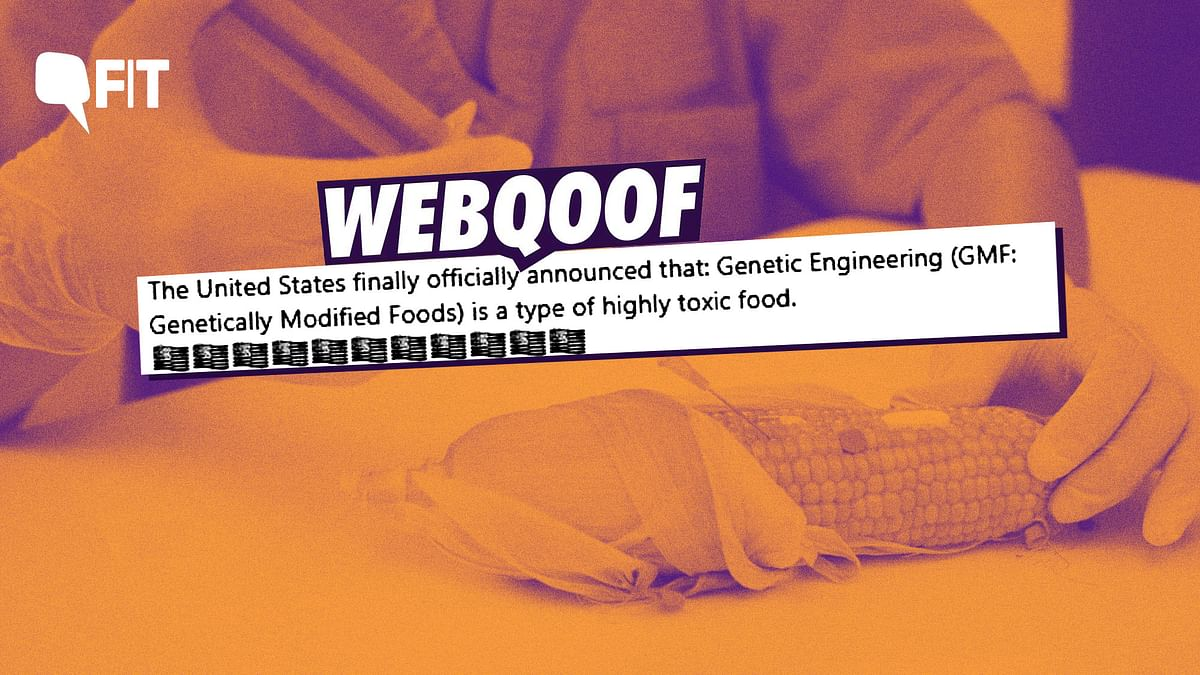 FIT WebQoof: Are Genetically Modified Foods Toxic and Cancerous?