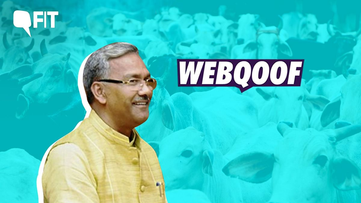 Uttarakhand Chief Minister, Trivendra Singh Rawat, also claimed that cows exhale oxygen.