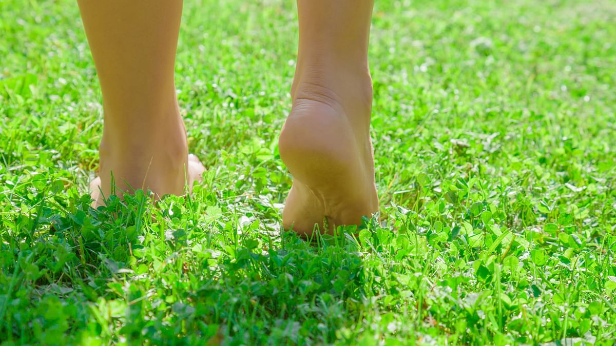 Walking on grass reduces swelling and inflammation caused by injuries.