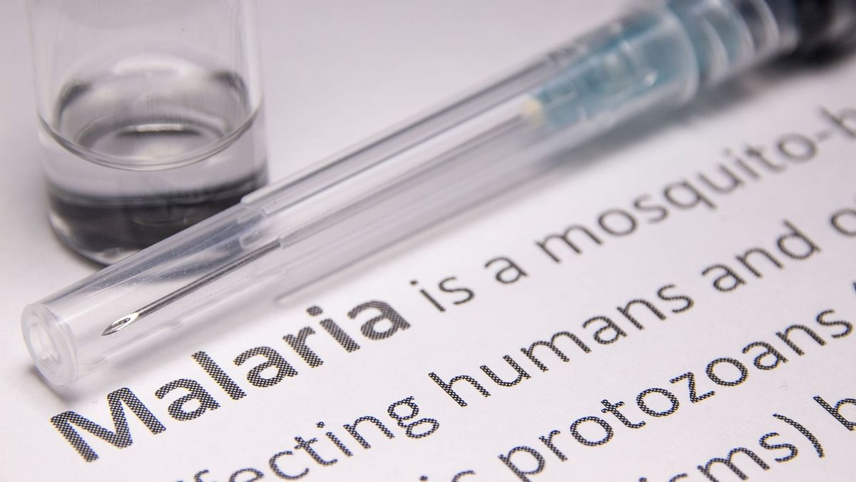 Possible to Eradicate Malaria, but Not with Flawed Vaccines: UN