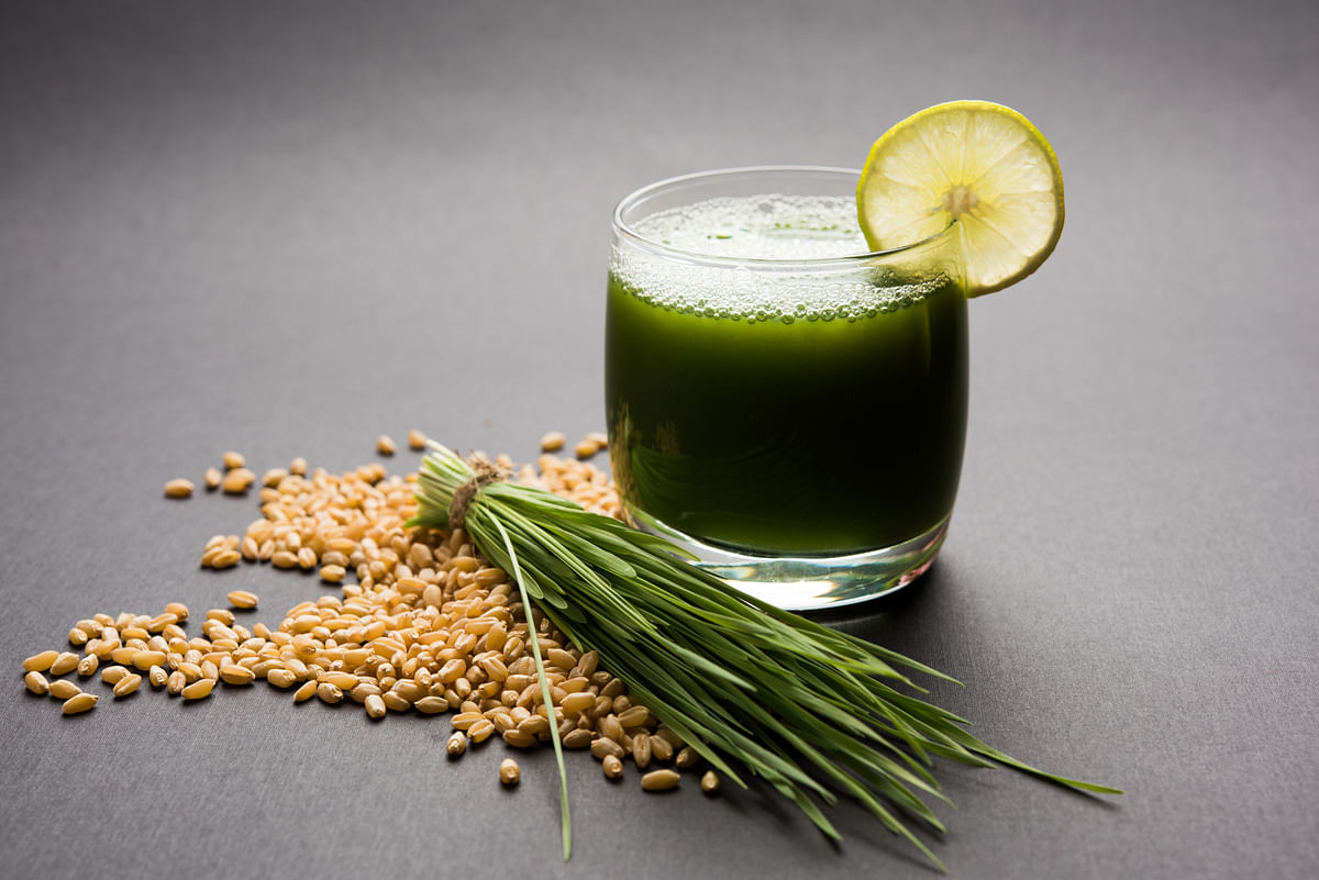 Start your morning with wheat grass.