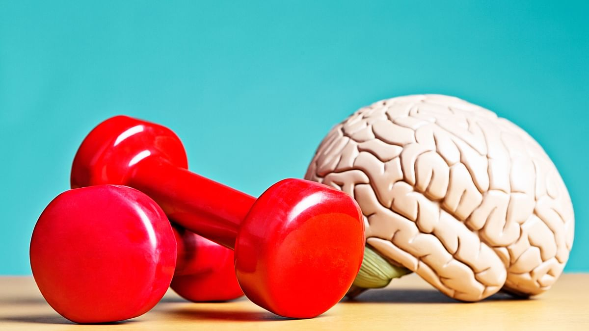 FitQuiz: How Can Diet And Exercise Make Your Mental Health Better?