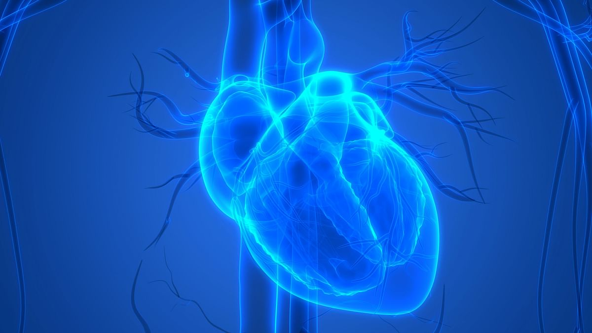Current treatments aim to restore blood and the oxygen supply to the heart as quickly as possible to reduce scarring.