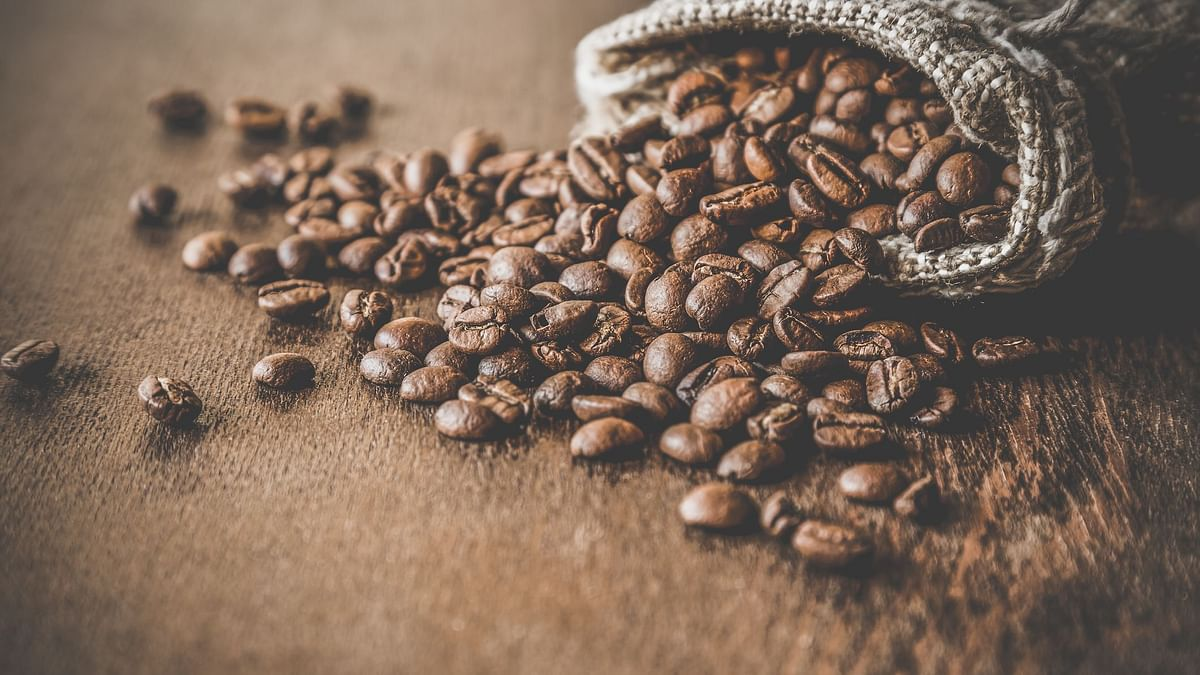 Caffeine can be a good element to reduce obesity and excess weight