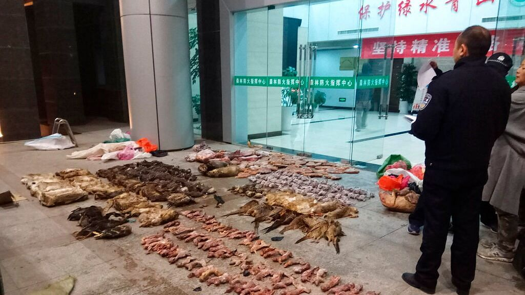Coronavirus Renews Safety Concern About Slaughtering Wild Animals