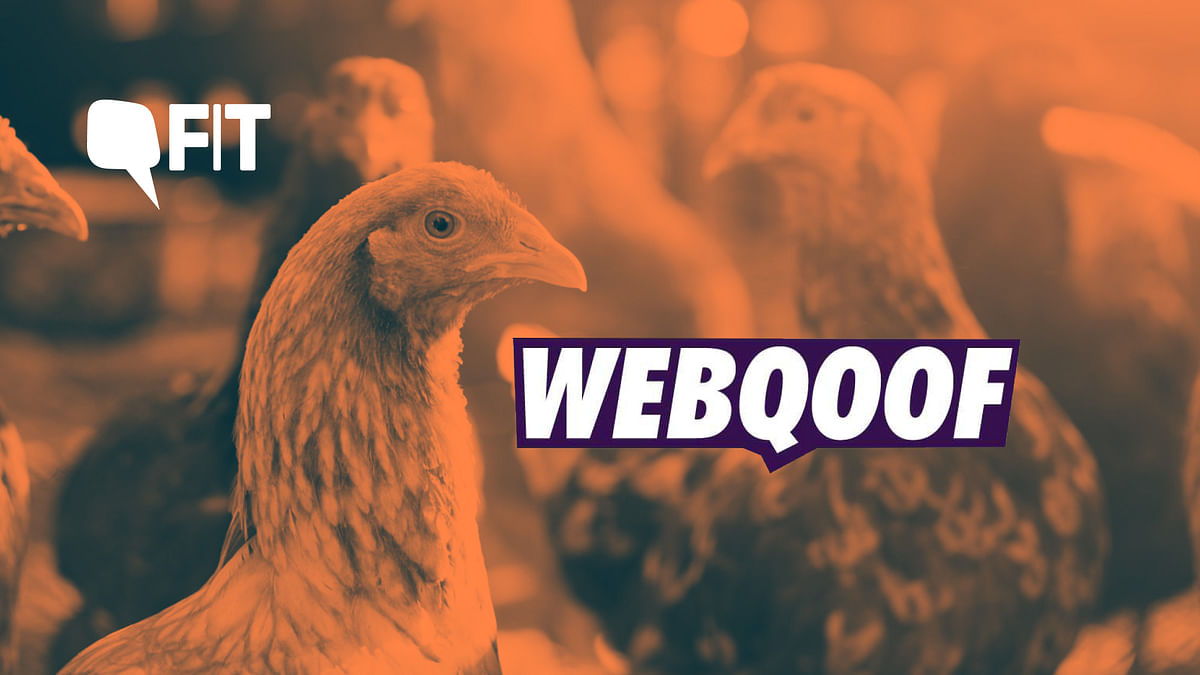 FIT WebQoof: Did Coronavirus Come From Chicken?