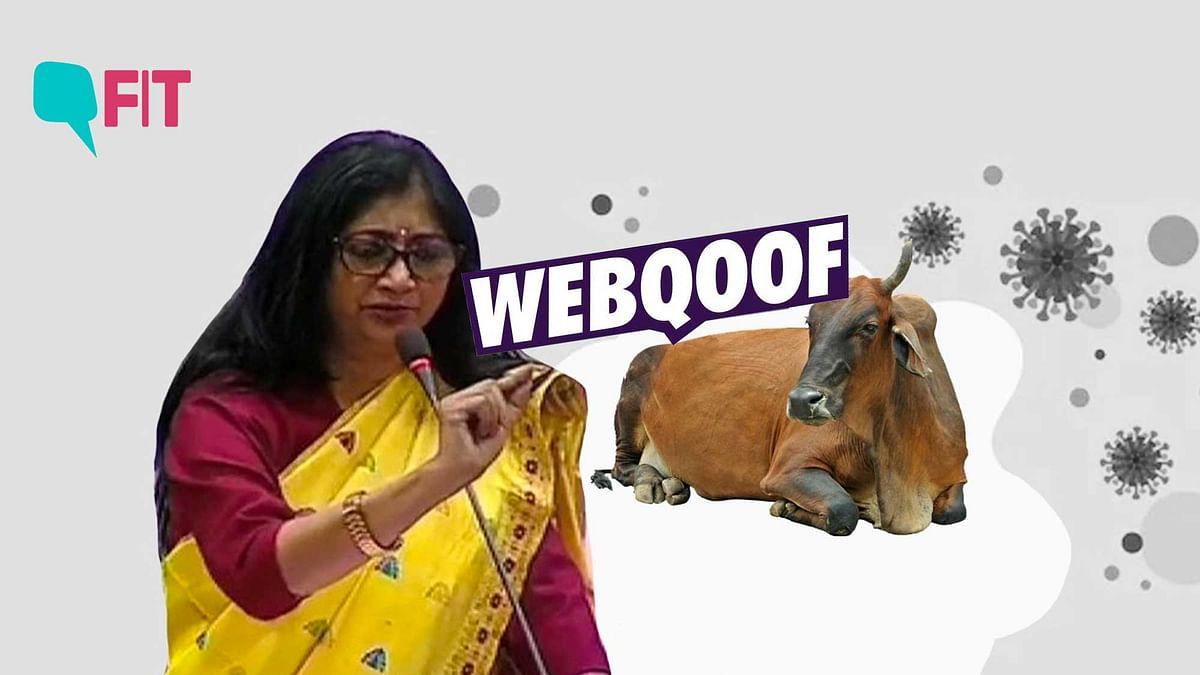 Hindu Mahasabha chief hosts cow urine party to tackle coronavirus. We fact check his claims.