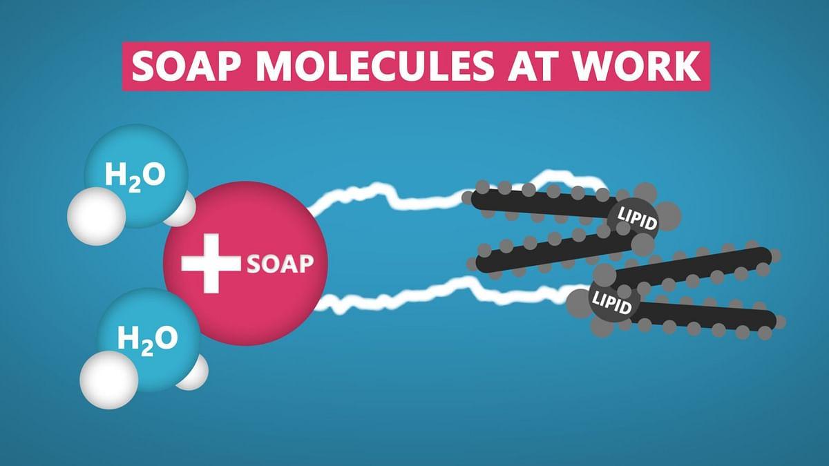 On Global Hand Washing Day, How Soap Destroys Coronavirus