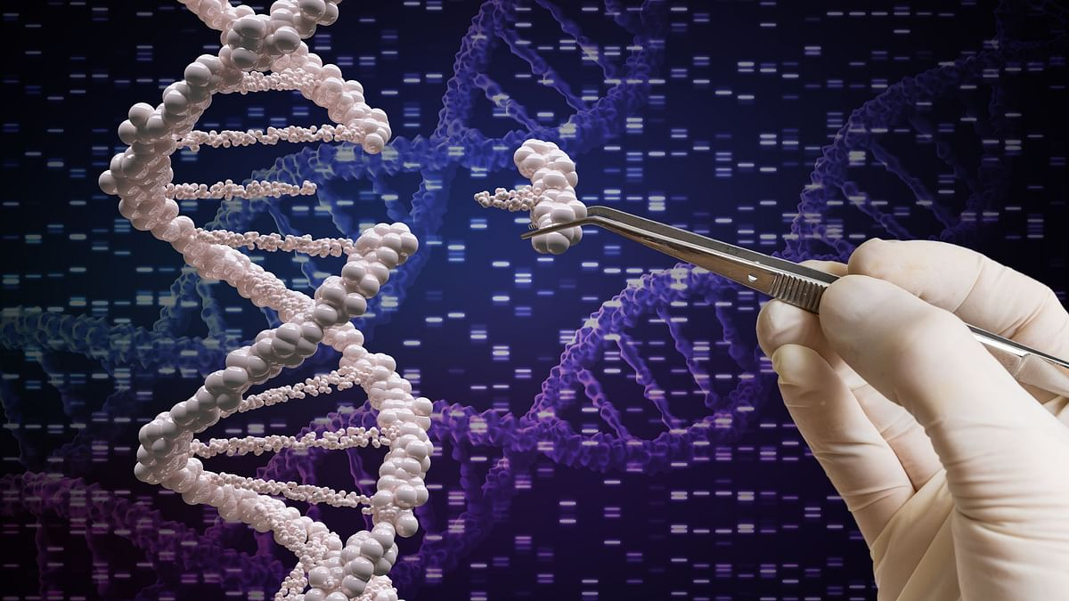 """What is CRISPR? A genome is the full set of genetic """"instructions"""" that determine how an organism will develop."""