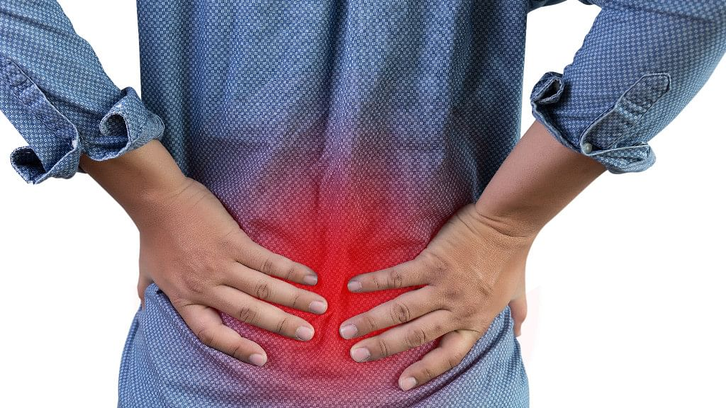 More Autonomy at Work Reduces Low Back Pain Risk: Study