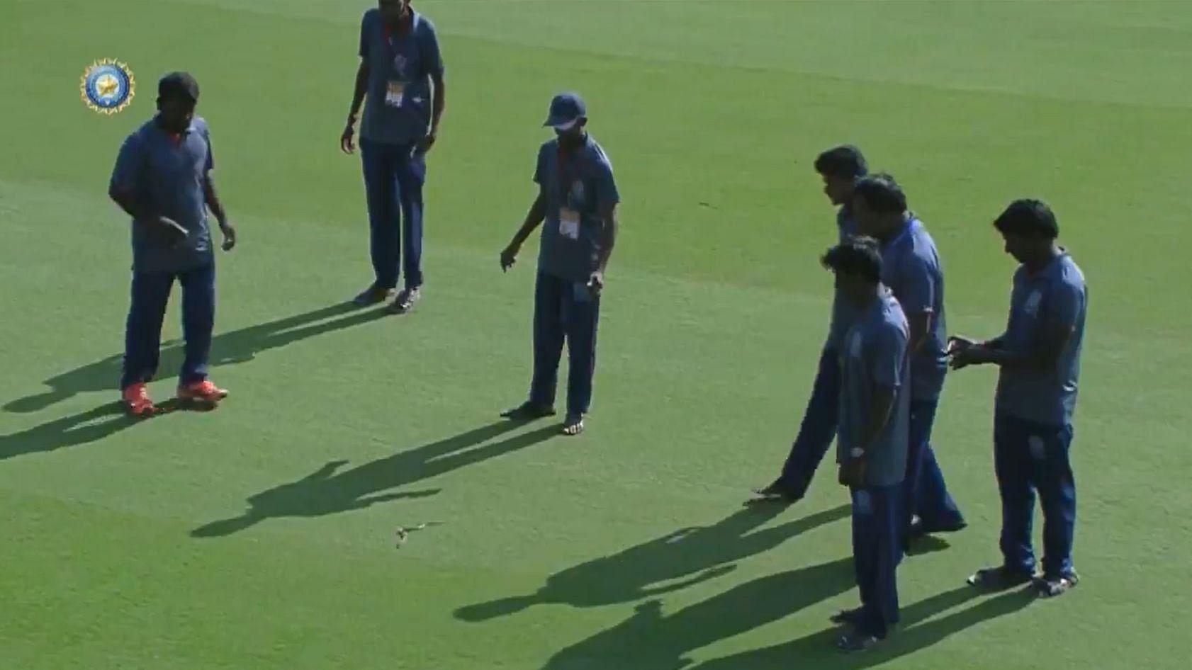 Andhra vs Vidarbha Ranji Game Delayed After Snake Enters Ground