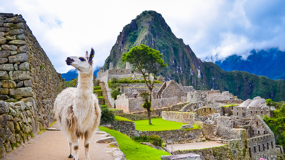 Peruvian Exports to UAE Grow 100%