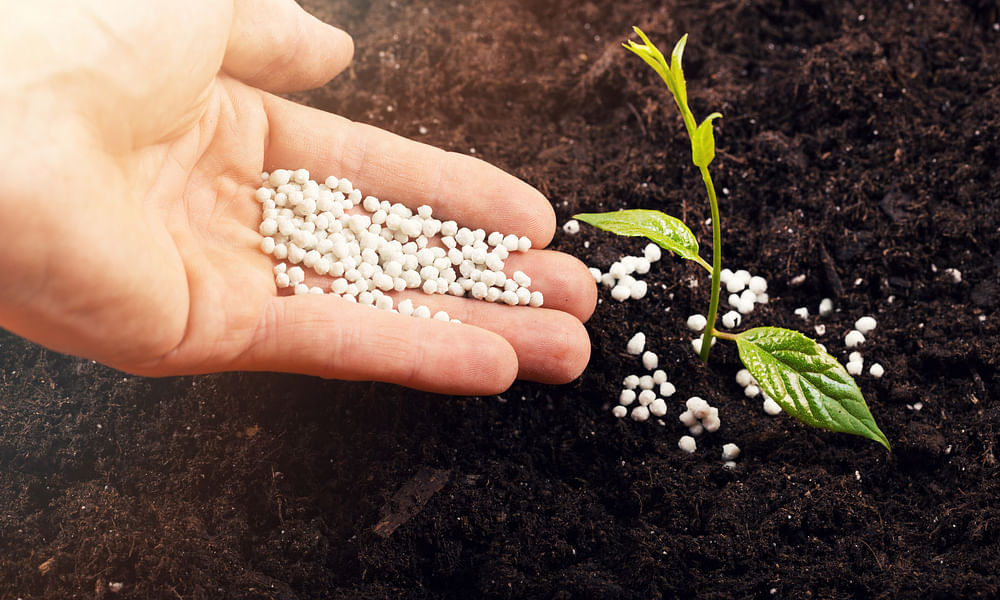 GCC Leading Field in Fertilizer Exports