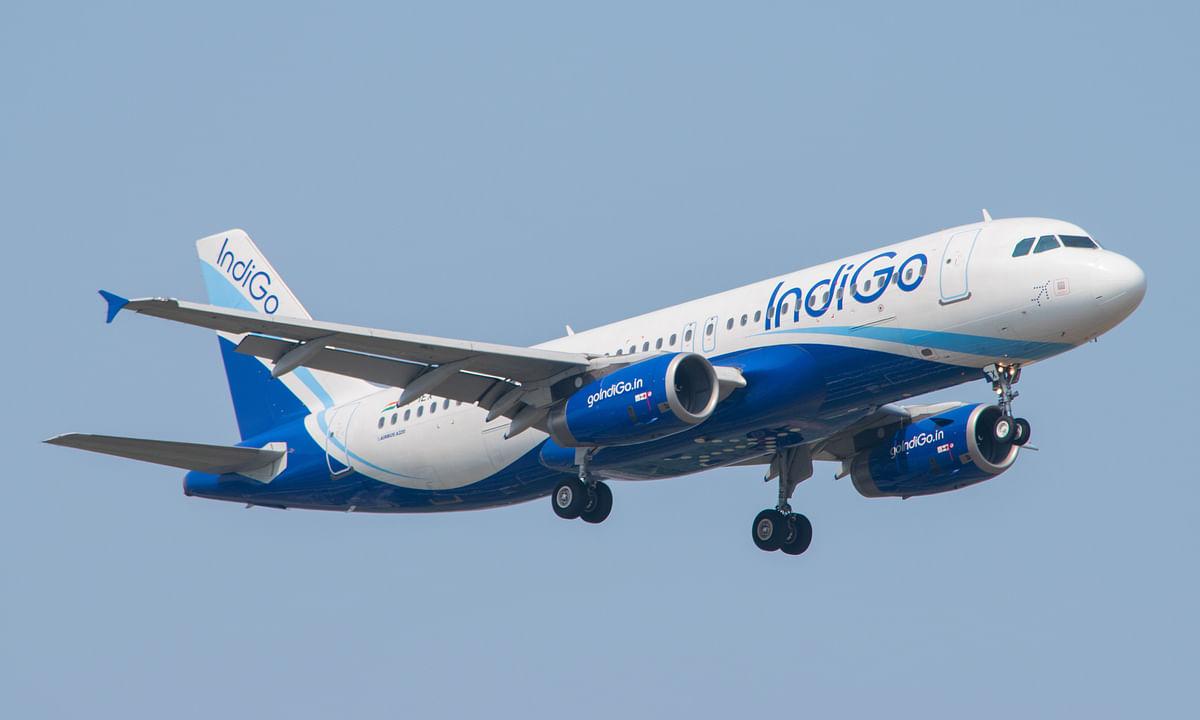 IndiGo Begins New Daily Flights to Abu Dhabi