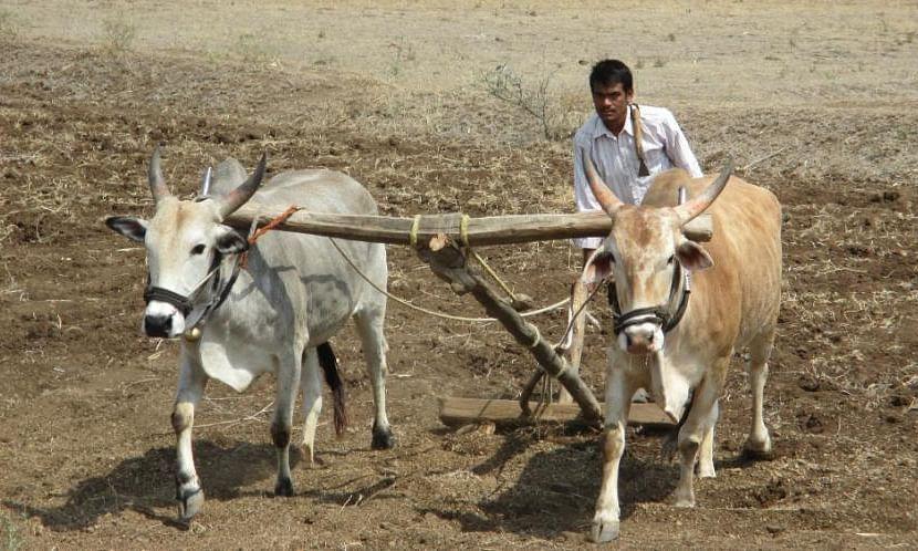 मोदी सरकार द्वारा किसानों को दिया गया तोहफा क्या NDA के लिए गेम चेंजर साबित होगा?