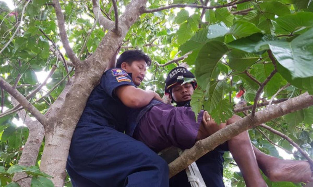 18 महीनों से नहीं मिला था वेतन, आत्महत्या करने पेड़ पर चढ़ गया  युवक !