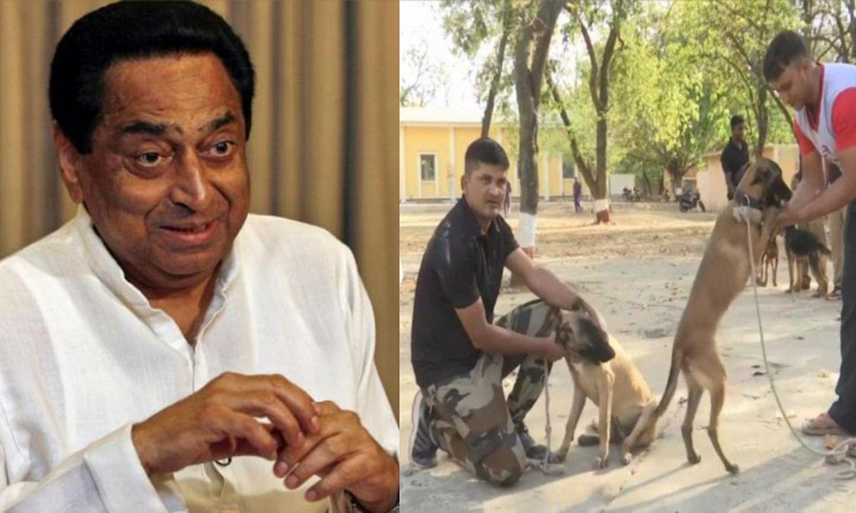 मध्य प्रदेश सरकार ने पुलिस के कुत्तों और हैंडलर्स का किया तबादला, BJP ने ले ली चुटकी !