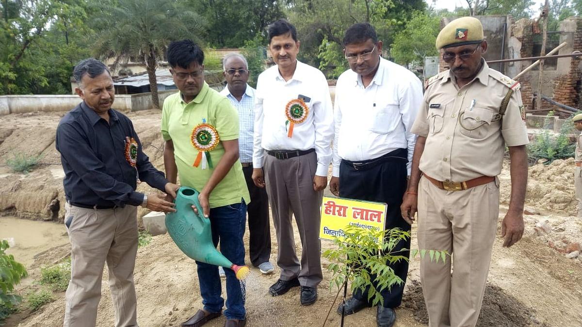 Tree Plantation Mission in Banda