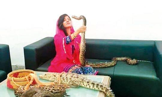 पीएम मोदी को सांप-मगरमच्छ दिखाने वाली पाकिस्तानी गायिका का चालान।