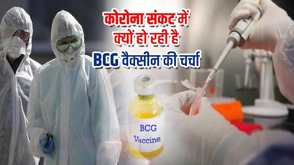 चर्चा में आया BCG वैक्सीन, क्या कोरोना को हरा सकता है यह टीका ?