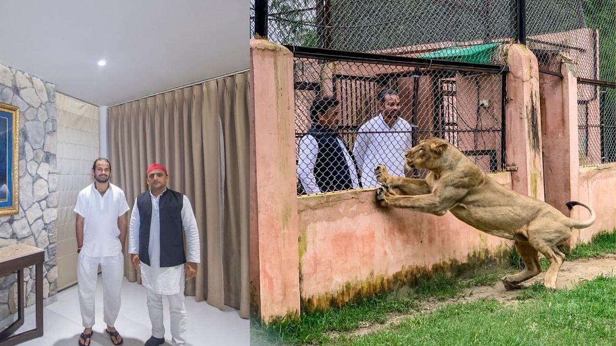 akhilesh yadav and tej pratap yadav lion safari etawah visit