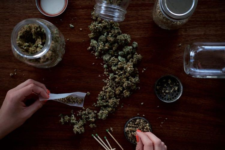 This is What the Future of Cannabis Looks Like