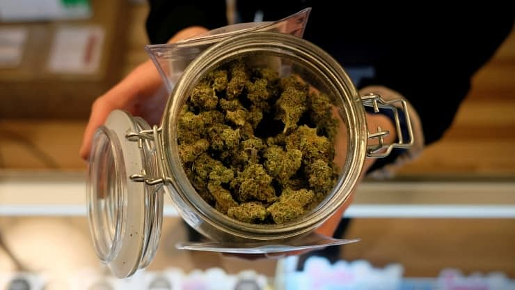 Democratic senators will push to pass pot reform bill this year