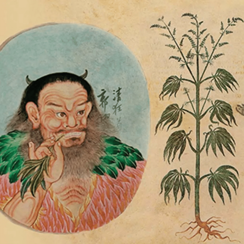 The History and Mystics of Cannabis