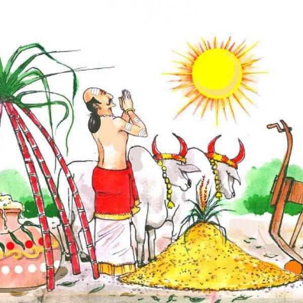 மண்புழு மன்னாரு: மாட்டுக்கு உயிர்கொடுத்த இளநீர்!