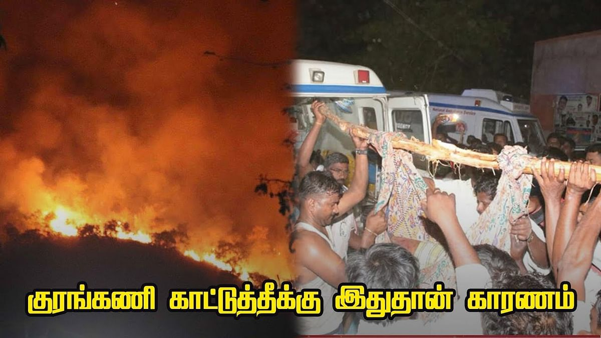 Kurangani Forest Fire : Reason behind the forest fire ?