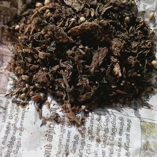 `ஒரு பொட்டலம் 100 ரூபாய்!' - ஓ.பி.எஸ் ஊரில் கஞ்சா விற்பனை அமோகம்
