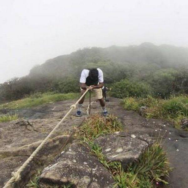 மூலிகை மரங்கள் நிறைந்த அகஸ்தியர் மலையில் 'ட்ரெக்கிங்' சீஸன் தொடக்கம்! #NeverMiss