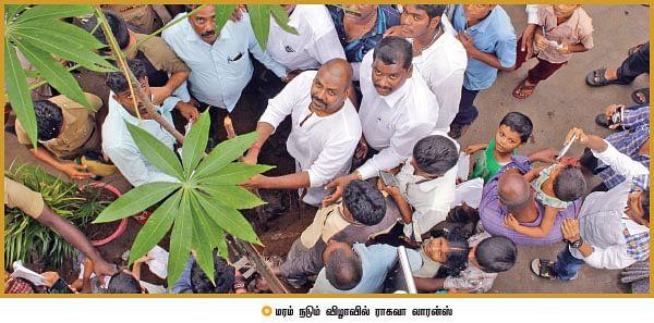 கலாமின் காலடிச் சுவட்டில்... களத்தில் 100 இளைஞர்கள்