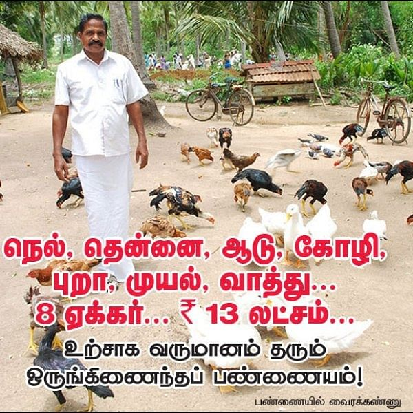 ₹ 13,00,000 from 8 acres... Growing paddy, coconut, goat, hen, pigeon, rabbit and duck..!