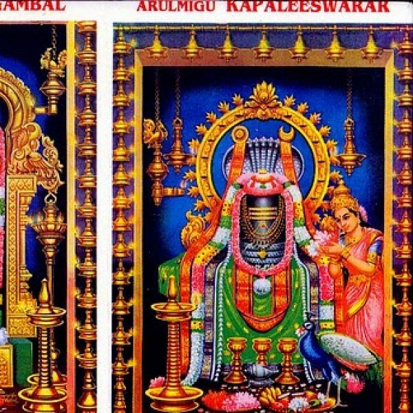 கபாலி கோயில் புன்னை வனநாதர் சிலை என்னவானது பக்தர்கள் கவலை!