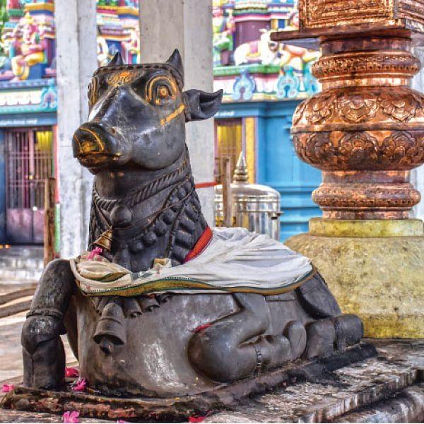 காசிக்கு நிகரான திருக்காஞ்சி!
