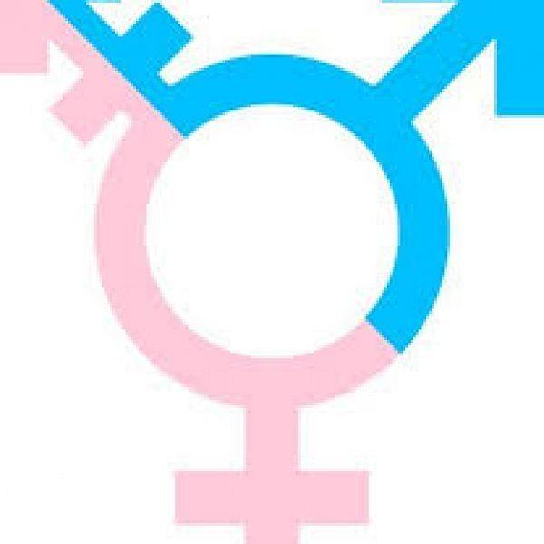 பான் கார்டு படிவத்தில் மூன்றாம் பாலினத்துக்காகத் திருத்தம்: திருநங்கைகள் வரவேற்பு  #Transgender