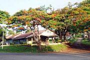 டூர் ஸ்பெஷல்
