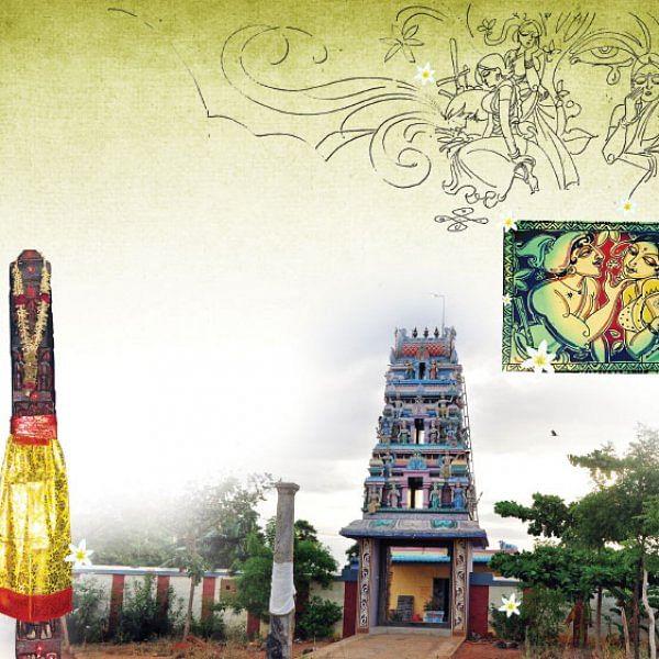 மாசி - மல்லி
