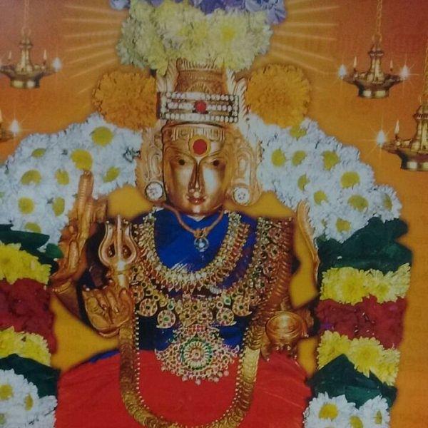 அதிகாரி, நீதிபதி, துடியான சாமி... சைதை பிடாரி இளங்காளி அம்மன்! #AadiSpecial #Video