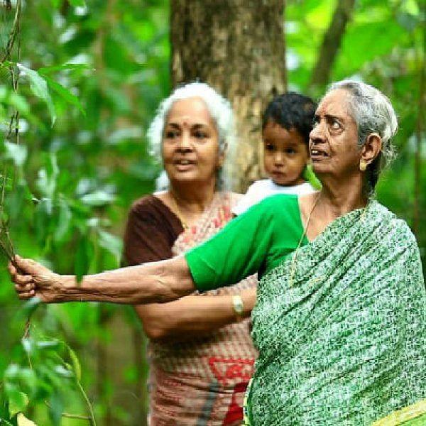 40 ஆண்டுகள்... 5 ஏக்கர் காடு... 2 தேசிய விருதுகள்... யார் இந்த 85 வயது தேவகி பாட்டி?